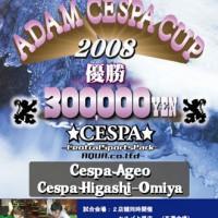 ADAM-CESPA-CUP2008 Poster