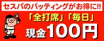 100batt-210