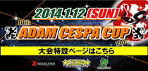cespacup2014banner210