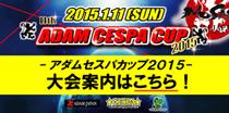 セスパカップ2015バナー210